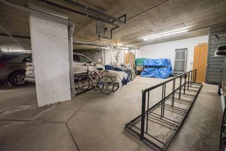 Photo 25: 306 6623 172 Street in Edmonton: Zone 20 Condo for sale : MLS®# E4184369