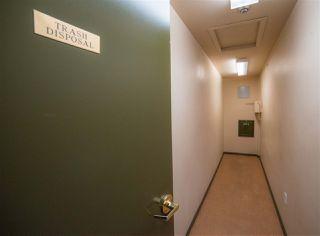 Photo 19: 306 6623 172 Street in Edmonton: Zone 20 Condo for sale : MLS®# E4184369