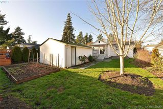 Photo 15: 569 Hurst Ave in VICTORIA: SW Glanford Single Family Detached for sale (Saanich West)  : MLS®# 832507