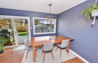 Photo 5: 569 Hurst Ave in VICTORIA: SW Glanford Single Family Detached for sale (Saanich West)  : MLS®# 832507