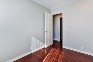 Photo 18: 99 ABERGALE Place NE in Calgary: Abbeydale Detached for sale : MLS®# C4293699