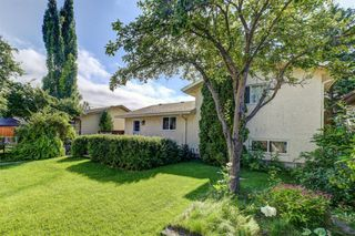 Photo 32: 99 ABERGALE Place NE in Calgary: Abbeydale Detached for sale : MLS®# C4293699