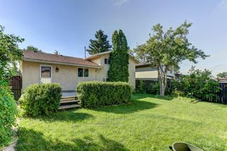 Photo 30: 99 ABERGALE Place NE in Calgary: Abbeydale Detached for sale : MLS®# C4293699