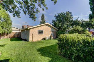 Photo 33: 99 ABERGALE Place NE in Calgary: Abbeydale Detached for sale : MLS®# C4293699