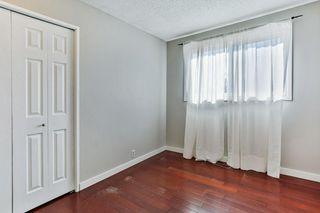 Photo 17: 99 ABERGALE Place NE in Calgary: Abbeydale Detached for sale : MLS®# C4293699