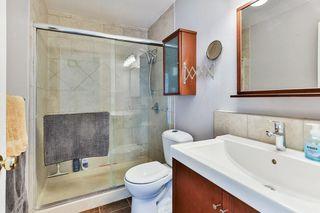Photo 19: 99 ABERGALE Place NE in Calgary: Abbeydale Detached for sale : MLS®# C4293699