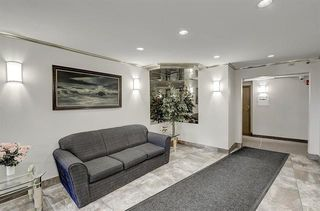 Photo 24: 221 333 GARRY Crescent NE in Calgary: Greenview Apartment for sale : MLS®# C4300047