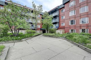 Photo 21: 221 333 GARRY Crescent NE in Calgary: Greenview Apartment for sale : MLS®# C4300047