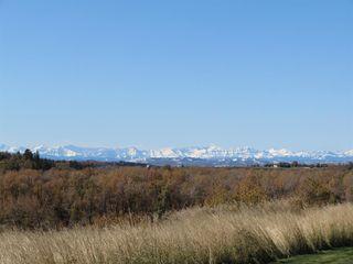 Photo 43: 49 Mist Mountain Rise: Okotoks Detached for sale : MLS®# A1017738