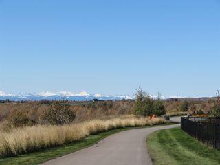 Photo 44: 49 Mist Mountain Rise: Okotoks Detached for sale : MLS®# A1017738