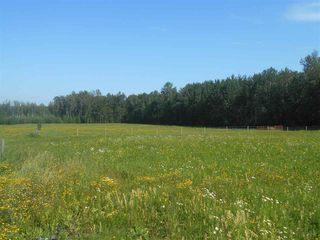 Photo 2: 49111 RR 73: Rural Brazeau County Rural Land/Vacant Lot for sale : MLS®# E4208197
