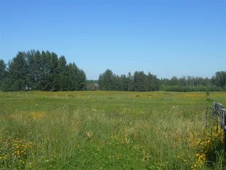 Photo 3: 49111 RR 73: Rural Brazeau County Rural Land/Vacant Lot for sale : MLS®# E4208197