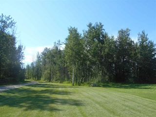 Photo 7: 49111 RR 73: Rural Brazeau County Rural Land/Vacant Lot for sale : MLS®# E4208197