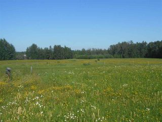 Photo 4: 49111 RR 73: Rural Brazeau County Rural Land/Vacant Lot for sale : MLS®# E4208197