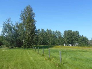 Photo 9: 49111 RR 73: Rural Brazeau County Rural Land/Vacant Lot for sale : MLS®# E4208197