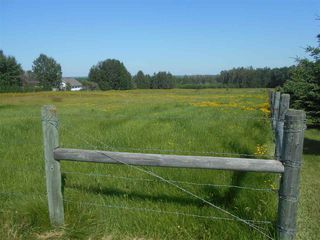 Photo 8: 49111 RR 73: Rural Brazeau County Rural Land/Vacant Lot for sale : MLS®# E4208197
