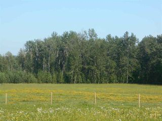 Photo 5: 49111 RR 73: Rural Brazeau County Rural Land/Vacant Lot for sale : MLS®# E4208197