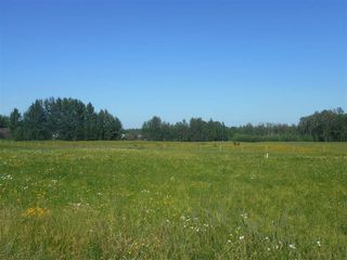 Photo 6: 49111 RR 73: Rural Brazeau County Rural Land/Vacant Lot for sale : MLS®# E4208197
