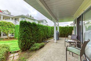 "Photo 14: 111 7156 121 Street in Surrey: West Newton Townhouse for sale in ""GLENWOOD VILLAGE"" : MLS®# R2505094"