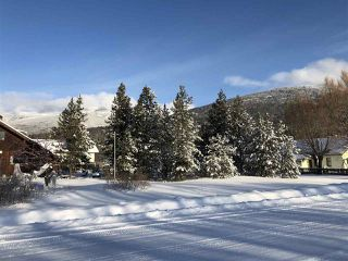 Photo 8: 1022 6TH Avenue in Valemount: Valemount - Town Land for sale (Robson Valley (Zone 81))  : MLS®# R2427968