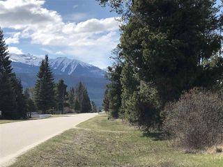 Photo 5: 1022 6TH Avenue in Valemount: Valemount - Town Land for sale (Robson Valley (Zone 81))  : MLS®# R2427968