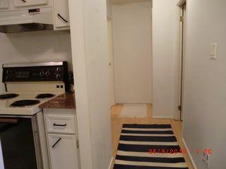 Photo 15: 11226 18 Avenue in Edmonton: Zone 16 Carriage for sale : MLS®# E4174995