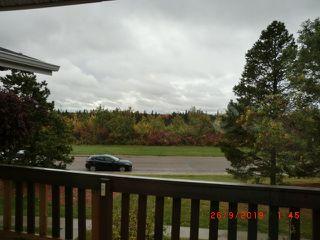 Photo 30: 11226 18 Avenue in Edmonton: Zone 16 Carriage for sale : MLS®# E4174995