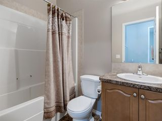 Photo 25: 1555 COPPERFIELD Boulevard SE in Calgary: Copperfield Detached for sale : MLS®# A1036352