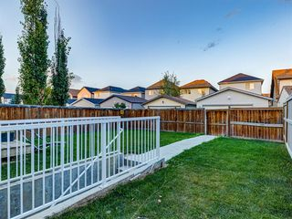 Photo 45: 1555 COPPERFIELD Boulevard SE in Calgary: Copperfield Detached for sale : MLS®# A1036352