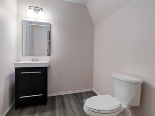 Photo 42: 1555 COPPERFIELD Boulevard SE in Calgary: Copperfield Detached for sale : MLS®# A1036352