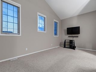 Photo 19: 1555 COPPERFIELD Boulevard SE in Calgary: Copperfield Detached for sale : MLS®# A1036352