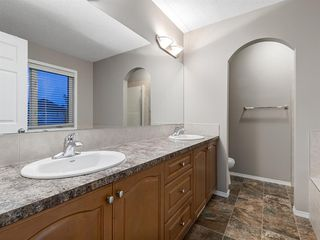 Photo 35: 1555 COPPERFIELD Boulevard SE in Calgary: Copperfield Detached for sale : MLS®# A1036352