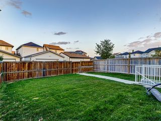 Photo 46: 1555 COPPERFIELD Boulevard SE in Calgary: Copperfield Detached for sale : MLS®# A1036352