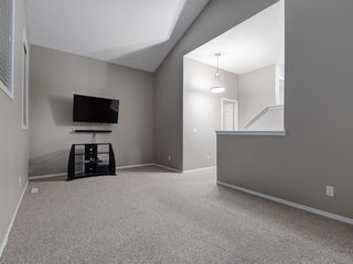 Photo 20: 1555 COPPERFIELD Boulevard SE in Calgary: Copperfield Detached for sale : MLS®# A1036352