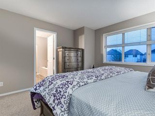Photo 34: 1555 COPPERFIELD Boulevard SE in Calgary: Copperfield Detached for sale : MLS®# A1036352