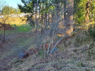 Photo 14: 3572 Parkview Cres in : PA Port Alberni Land for sale (Port Alberni)  : MLS®# 858457