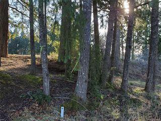 Photo 9: 3572 Parkview Cres in : PA Port Alberni Land for sale (Port Alberni)  : MLS®# 858457