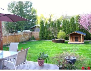 Photo 6: 27169 28TH Ave in Langley: Aldergrove Langley House for sale : MLS®# F2811193