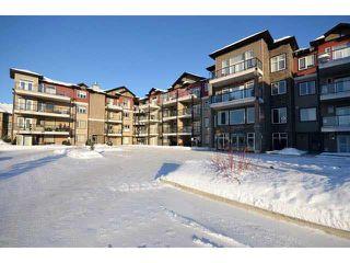 Photo 35:  in Edmonton: Zone 55 Condo for sale : MLS®# E4185933