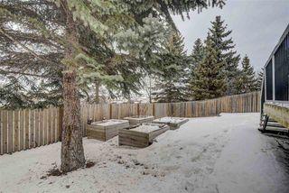 Photo 47: 4356 33 Street in Edmonton: Zone 30 House for sale : MLS®# E4190966
