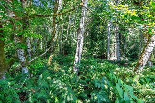 Photo 41: 7260 Ella Rd in : Sk John Muir House for sale (Sooke)  : MLS®# 845668