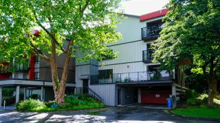Photo 6: 305 11240 DANIELS Road in Richmond: East Cambie Condo for sale : MLS®# R2489010