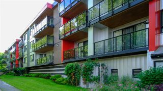 Photo 1: 305 11240 DANIELS Road in Richmond: East Cambie Condo for sale : MLS®# R2489010