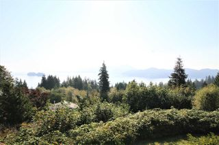 Photo 21: 125 WHARF Road in Gibsons: Gibsons & Area House for sale (Sunshine Coast)  : MLS®# R2497284