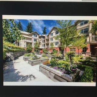 """Photo 19: 206 2511 KING GEORGE Boulevard in Surrey: King George Corridor Condo for sale in """"PACIFICA"""" (South Surrey White Rock)  : MLS®# R2527688"""