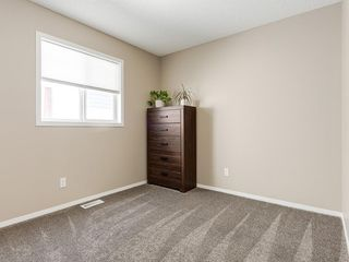 Photo 23: 247 COPPERFIELD Manor SE in Calgary: Copperfield Detached for sale : MLS®# C4297569