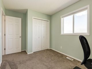Photo 27: 247 COPPERFIELD Manor SE in Calgary: Copperfield Detached for sale : MLS®# C4297569