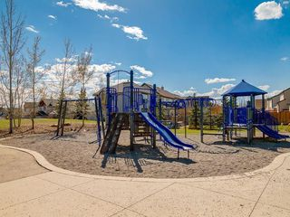 Photo 43: 247 COPPERFIELD Manor SE in Calgary: Copperfield Detached for sale : MLS®# C4297569