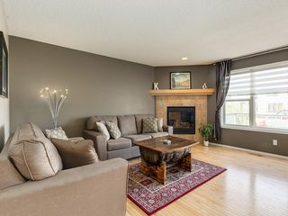 Photo 3: 247 COPPERFIELD Manor SE in Calgary: Copperfield Detached for sale : MLS®# C4297569