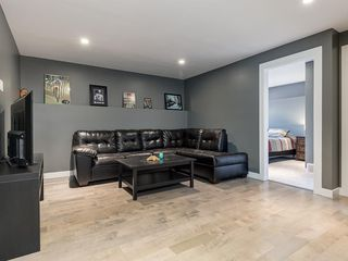 Photo 31: 247 COPPERFIELD Manor SE in Calgary: Copperfield Detached for sale : MLS®# C4297569